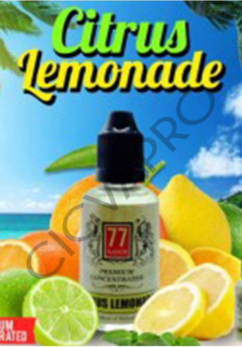 concentre citrus lemonade 30ml