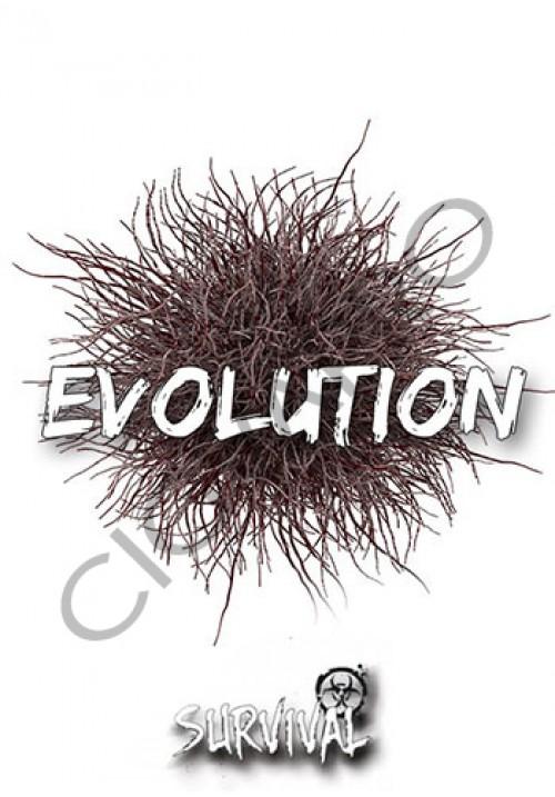 Concentré EVOLUTION 30ml - survival